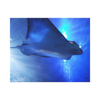 Blue Ocean Stingray Canvas Print