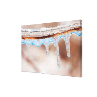 blue on an icy day gallery wrapped canvas