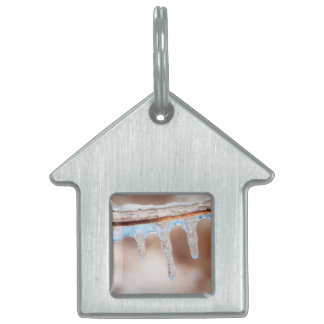 blue on an icy day pet ID tag