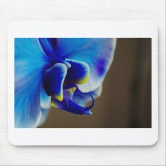 Blue Orchid Mouse Pad