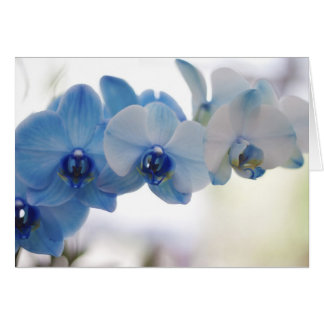Blue Orchids Card