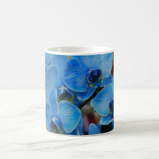 Blue Orchids from Gardenfest 2011 Vero Beach, FL Coffee Mug