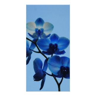 Blue Ordhid Custom Photo Card