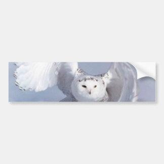 Blue Owl( Bumper Sticker1) Car Bumper Sticker