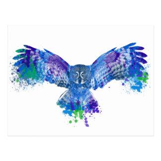 Blue owl color splash postcard