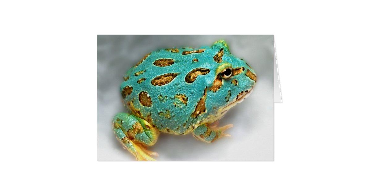 Blue Pac-Man Frog – Waiting, Waiting, Gotcha! Card | Zazzle.com
