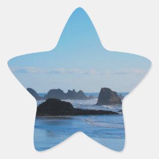 Blue Pacific coast Star Sticker