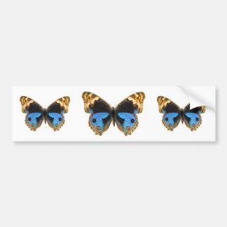 Blue Pansy Butterfly Bumper Sticker