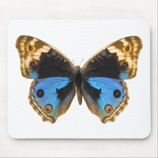 Blue Pansy Butterfly Mouse Pad