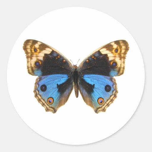 Blue Pansy Butterfly Round Sticker