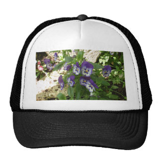 Blue Pansy Hat