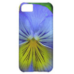 Blue Pansy iPhone 5C Cover