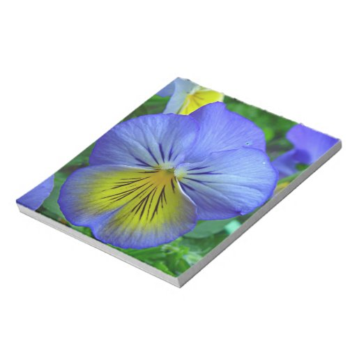Blue Pansy Note Pad