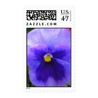 blue pansy postage