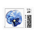 Blue Pansy Postage Stamp