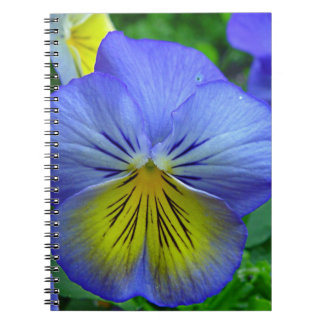 Blue Pansy Spiral Note Book