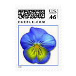 'Blue Pansy' Stamp