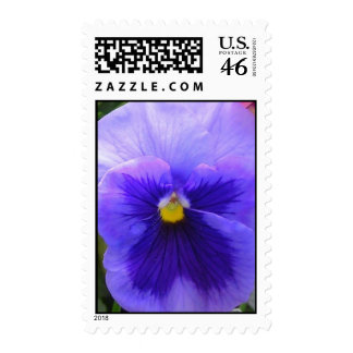 blue pansy stamps