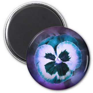 Blue Pansy With Water Droplets Magnet