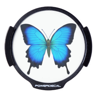 Blue Papilio Ulysses Butterfly Auto Power Decal LED Car Decal