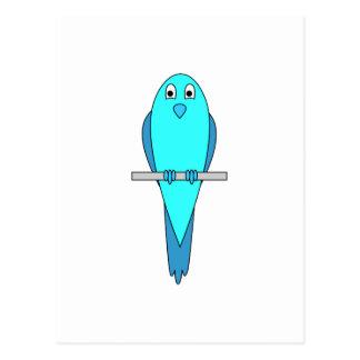 Blue Parakeet Bird Postcard