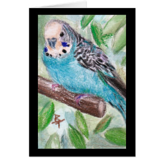 Blue Parakeet Blank Card
