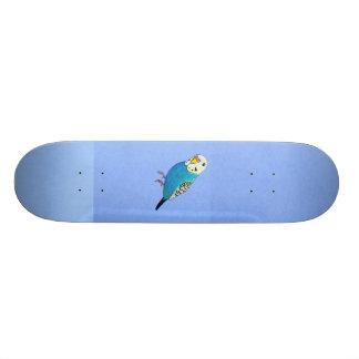 Blue Parakeet Drawing Skateboards