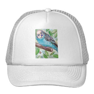 Blue Parakeet Hat