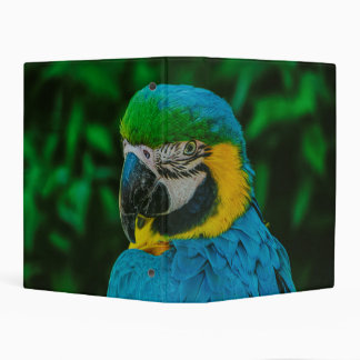 Blue parrot mini binder