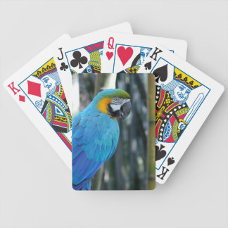Blue Parrot photo Bicycle Playing Cards