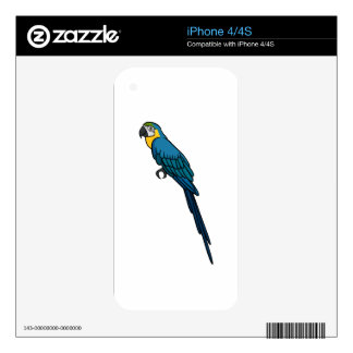Blue Parrot iPhone 4 Skins