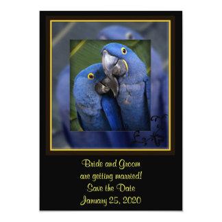 Blue Parrot Wedding 5x7 Paper Invitation Card
