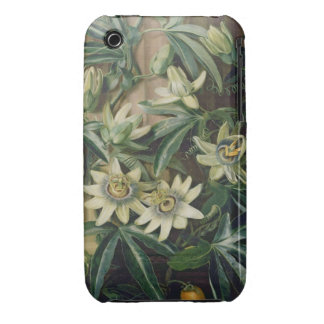 Blue Passion Flower for the 'Temple of Flora' by R iPhone 3 Case