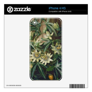 Blue Passion Flower for the 'Temple of Flora' by R Skins For The iPhone 4