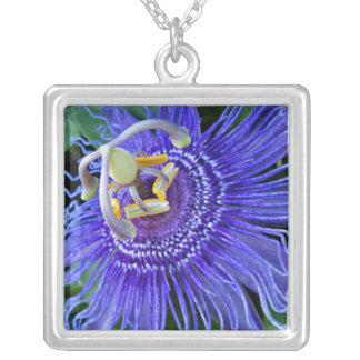 Blue Passion Flower - Necklace