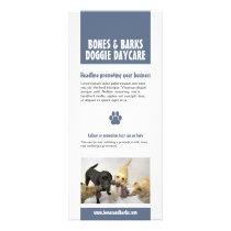 Blue Paw Print Dog Care Rack Card
