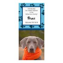 Blue Paw Prints Pattern Photo Pet Announcements Rack Card