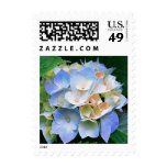 Blue & Peach/Coral Hydrangea Floral Postage Stamps