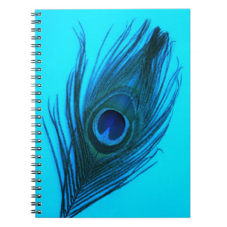 Blue Peacock Feather Notebook