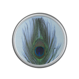 Blue Peacock Feather on White Speaker