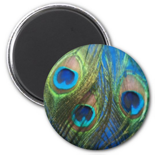 Blue Peacock Feathers 2 Inch Round Magnet