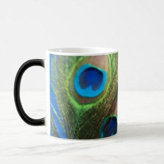 Blue Peacock Feathers Magic Mug