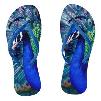Blue Peacock Flip Flops