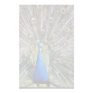 Blue Peacock Full Plumage Stationery