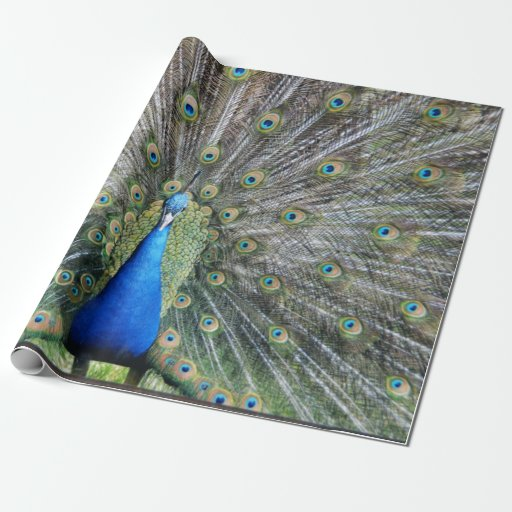 peacock wrapping paper Shop peacock fabric at the world's largest marketplace supporting indie designers print custom fabric, wallpaper, gift wrap with spoonflower starting at $5.
