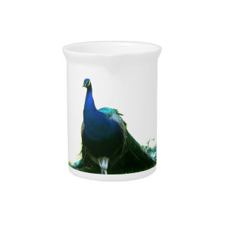 Blue peacock just grass clear sky drink pitcher