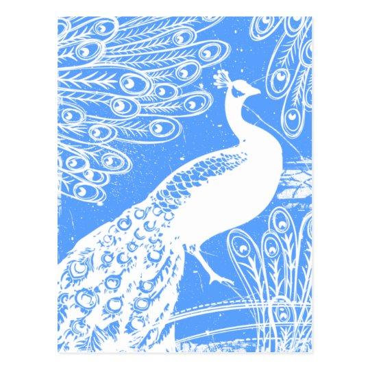 Blue Peacock Postcard