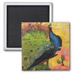 Blue Peacock Refrigerator Magnets
