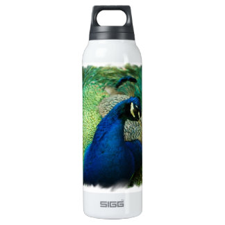 Blue Peacock SIGG Thermo 0.5L Insulated Bottle