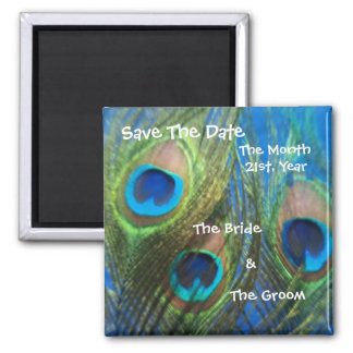 Blue Peacock Wedding Save the Date 2 Inch Square Magnet